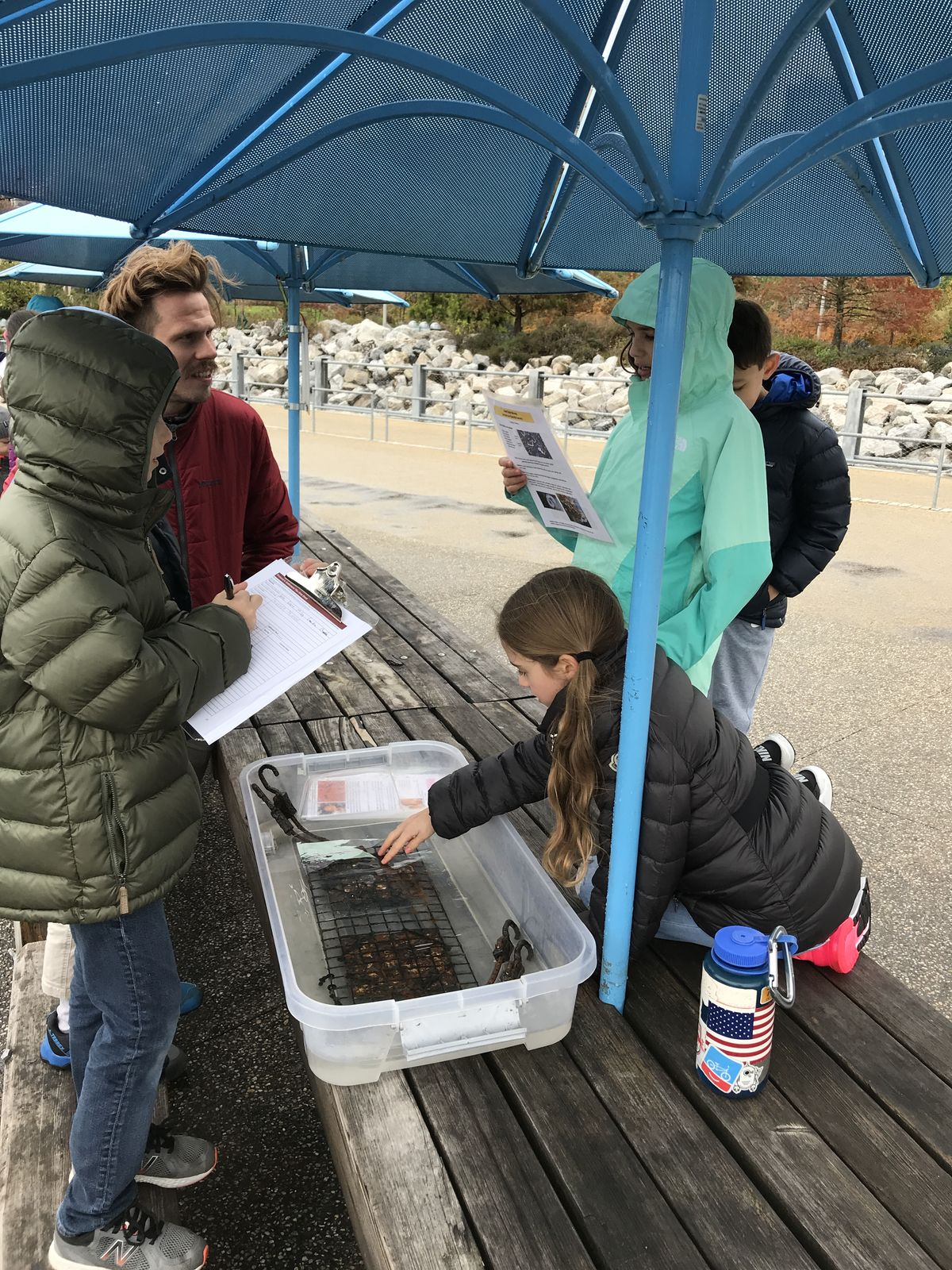 BC's 4th graders help restore oysters