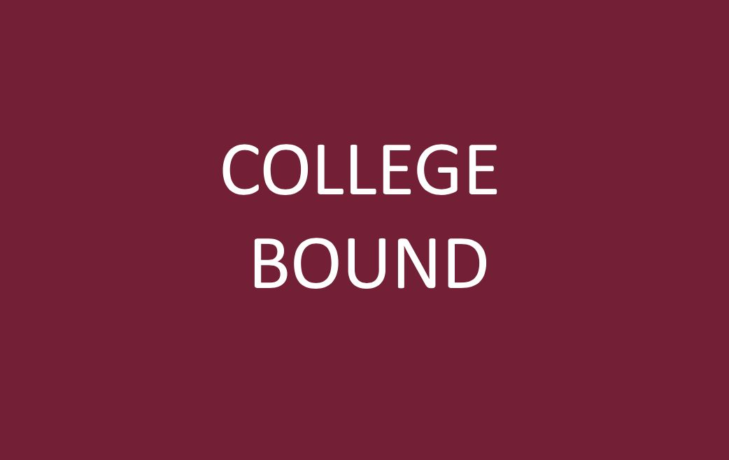 Class of 2019 College Enrollments