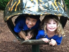 Campers enjoy a trip to the Prospect Park Zoo